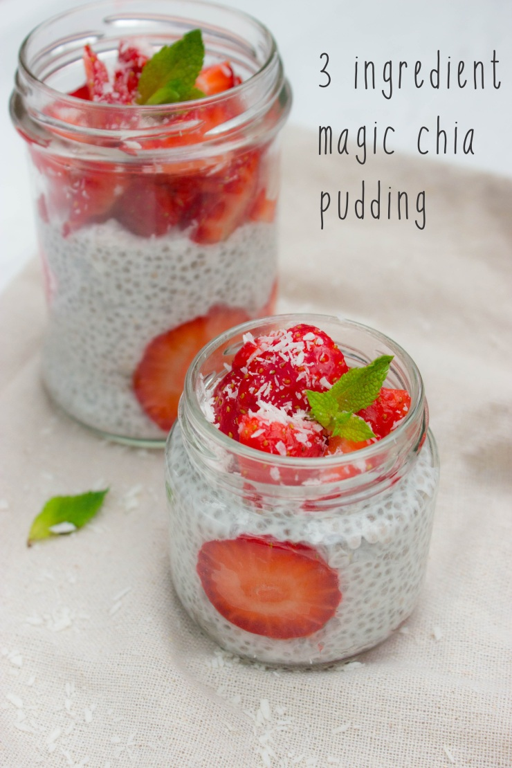 3 Ingredient Vegan Magic Chia Seed Pudding